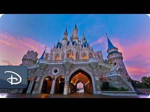 #DisneyParksLIVE: Sunrise at Magic Kingdom | Walt Disney World