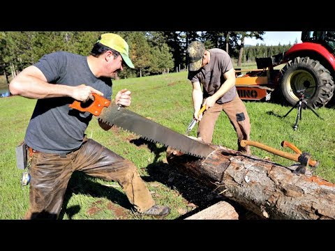 Japanese Saw V.S. Western Saw - Which Cuts Faster?