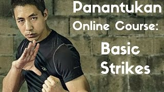 Panantukan OLC: Basic Strikes