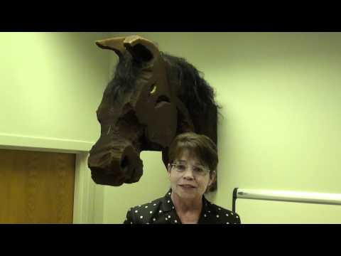 Omaha Reads 2011 Nominee: Coal Black Horse