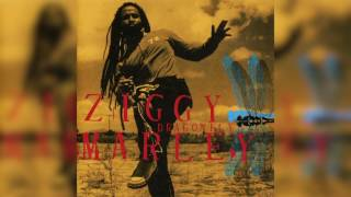 """Dragonfly"" from Ziggy Marley's debut solo album, DRAGONFLY (2003)...."