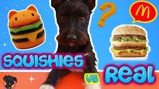 COMIDA REAL vs COMIDA SQUISHY / Retos Lana / Squishy Vs Real Food Challenge!