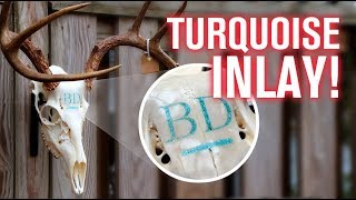 Turquoise Inlay in DEER SKULL! (How To)