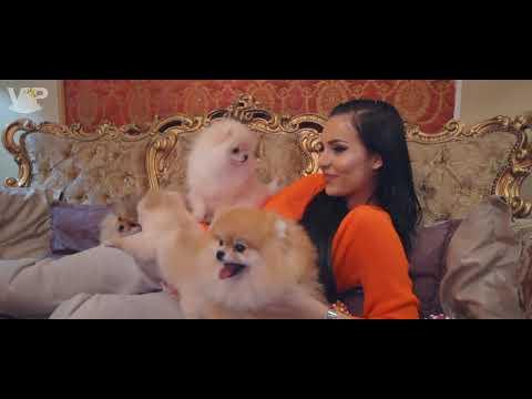 VIP POM STARS kennel - Anastasija Ražnatović