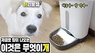 Who keeps feeding my baby puppy ?!