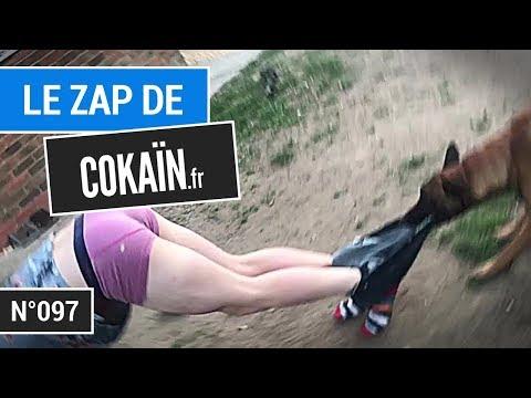 Le Zap De Cokaïn.fr N°097