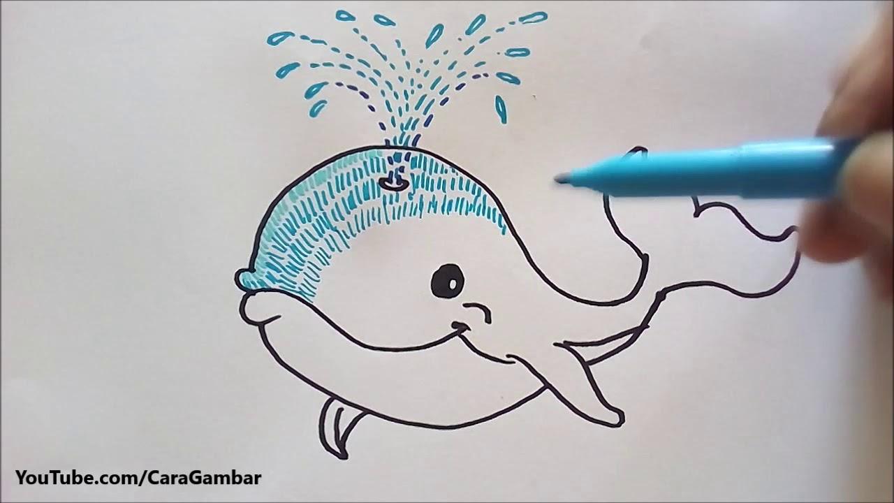 Download 900 Contoh Gambar Mewarnai Ikan Paus Terbaru