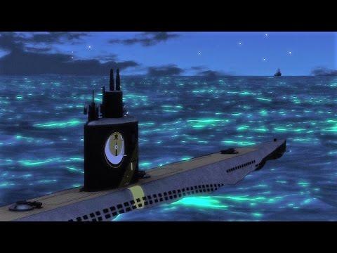 High School Fleet [AMV]- Wolfpack