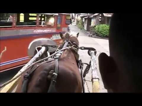 Horse & Cart Trip, Iligan City, Mindanao, Philippines...