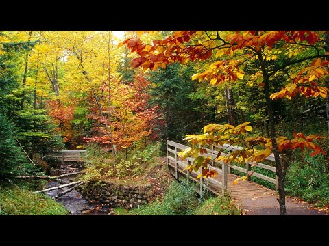 The Autumn Leaves  Nat King Cole