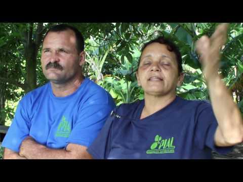 Innovación agropecuaria local en Cuba