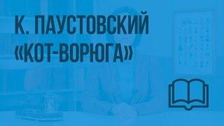 К. Паустовский «Кот-ворюга». Видеоурок по чтению 3 класс