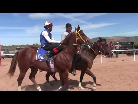 Carreras de Caballos en Ortiz, Son  Taste La Alameda 21 de Mayo 2017