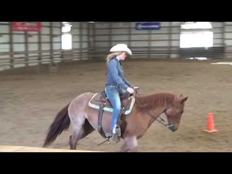 This Gorgeous Cowgirl has Skills & a Dang Good Beautiful Horse! ^5! Stefanie!!!