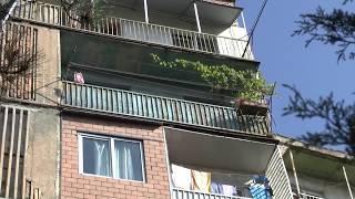 Тэвз Тбилиси 2017 спальный район