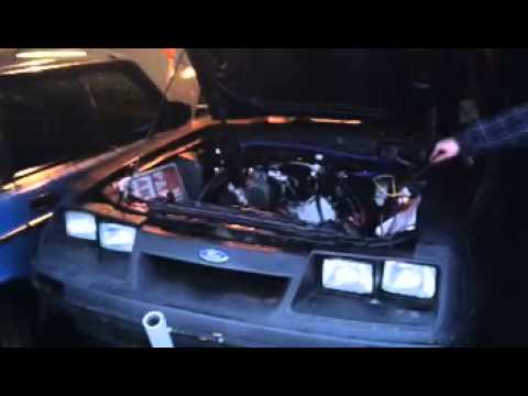 Ls1 mustang starts and dies