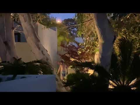 Download Gilligan's Island fight: PIMCO billionaire Bill Gross' bizarre showdown w/ his Laguna Beach neighbor
