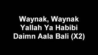 Adam Saleh  Waynak ft Faydee lyric