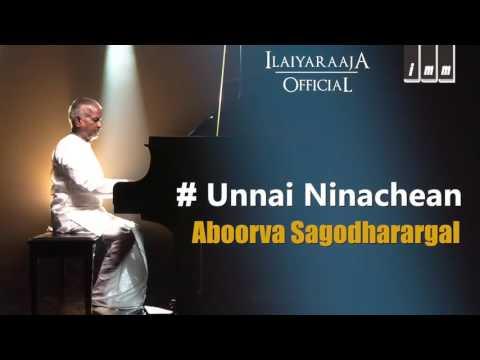 Unna Nenachen Song  Apoorva Sagodharargal Tamil Movie  Kamal Hassan  Amala  Ilaiyaraaja