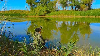 ЛОВЛЯ КАРАСЯ НА ЯМЕ Рыбалка НА поплавок ОСЕНЬЮ