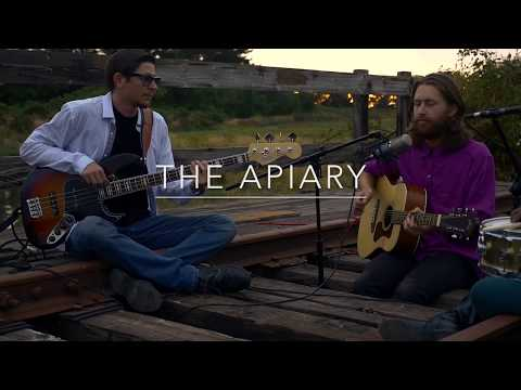 """The Apiary - """"Old Lenses"""""""