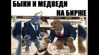 Быки и медведи на рынке криптовалют