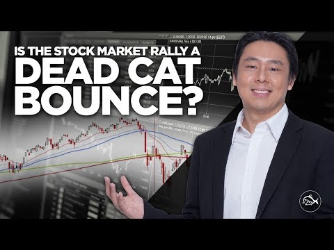 Is the Stock Market Rally a Dead Cat Bounce? By Adam Khoo