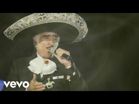 Vicente Fernández, Mariachi México De Pepe Villa - Aprendiste A Volar (Audio)