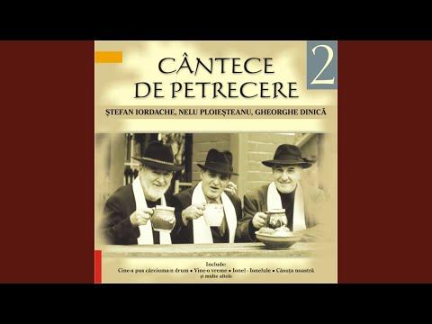 Damian & Brothers feat. Delia, Omu' iubit & Dorian - Cine-a pus carciuma-n drum (animated video)