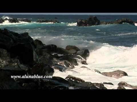 Stock Video - Stock Footage - Video Backgrounds - Tropical 0107