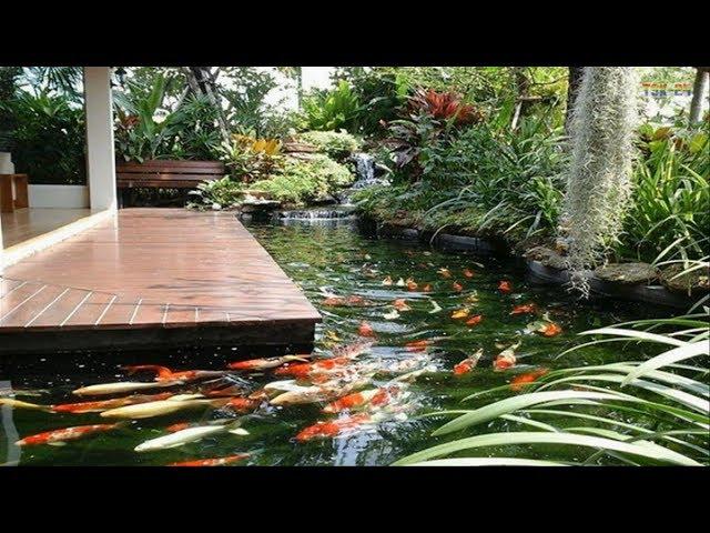 Small Garden Ideas Cool Backyard Pond Design Ideas Youtube