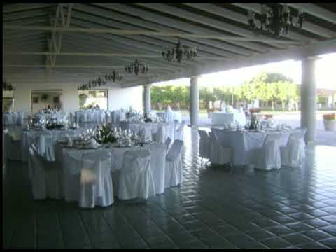 Livelounge Eventos Guadalajara Youtube