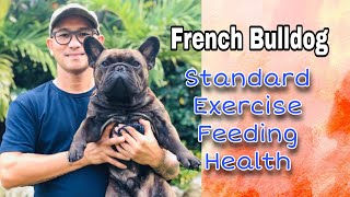 French Bulldog Standard // tips on how to live with the frenchies// filipino