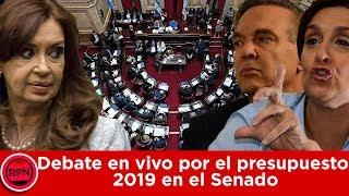 SENADO EN VIVO: debate por el presupuesto 2019
