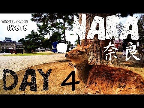 【旅遊VLOG】 travel JAPAN KYOTO & OSAKA DAY 4 part1日本京都大阪自由行  GoPro HERO4 HD   都是鹿!!!