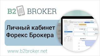 Личный кабинет Форекс :: B2Broker 📈 Liquidity and Forex Tech Provider