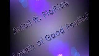Avicii ft FloRida - Levels of Good Feelin' -- Electro Hop Music