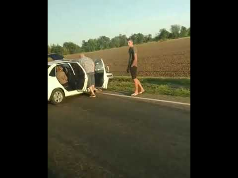 Две легковушки врезались на трассе между Новоалександровском и Ставрополем