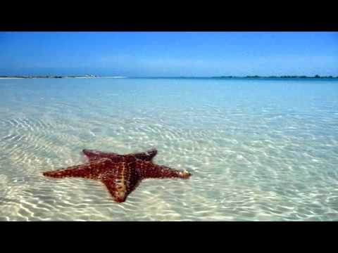 Чип-Топ® Туристическая компания  Официальный сайт ООО