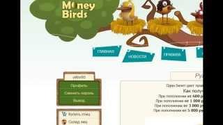 Заработать в интернете 2000 руб в день