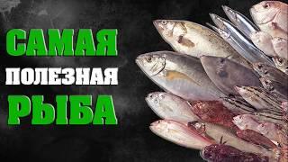Какая рыба самая полезная мнение ученых