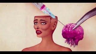 Melanie Martinez  -Mrs  Potato Head  (Evolution women) Lyrics