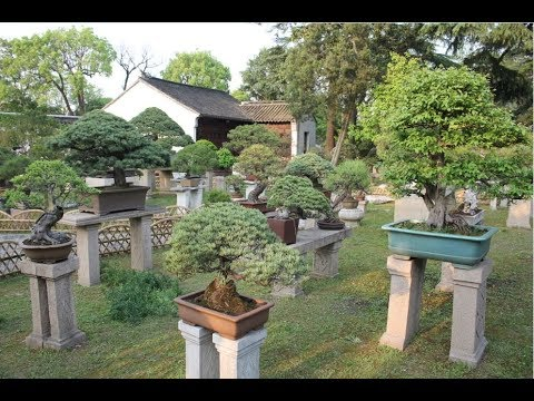 Humble Administrator's Garden / 拙政园 / 拙政園 (Slideshow)