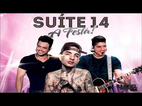 Henrique e Diego - Suite 14 - Part: Mc Guime