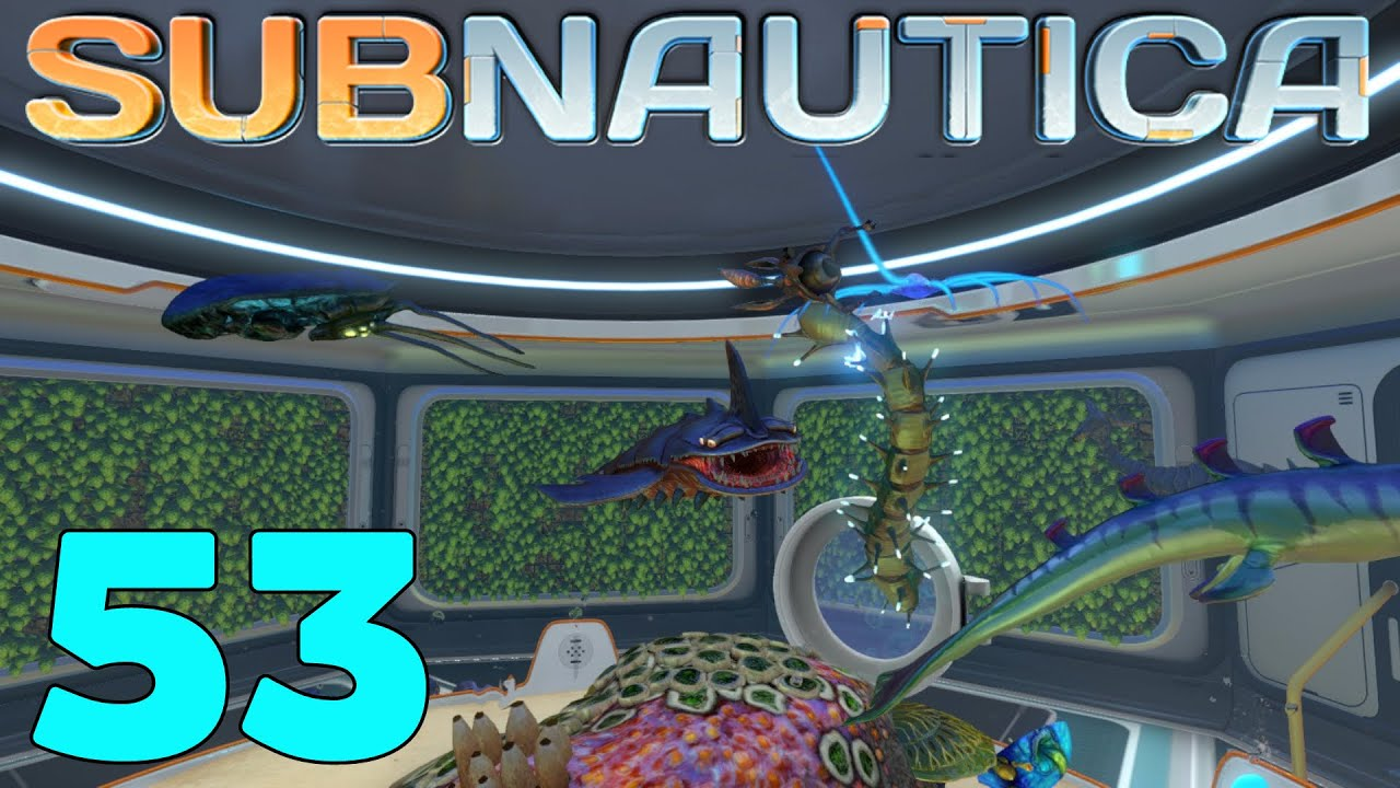 Subnautica ep 53 39 hatching eggs baby fish new wreck for How long does fish oil stay in your system