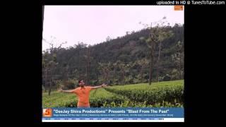 12. DeeJay Shiva Productions Feat. Babbu Mann - Challa [Desi Crook ReFix]