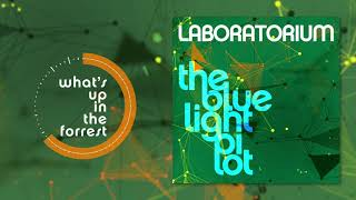 Laboratorium - What's Up In The Forest (Live)