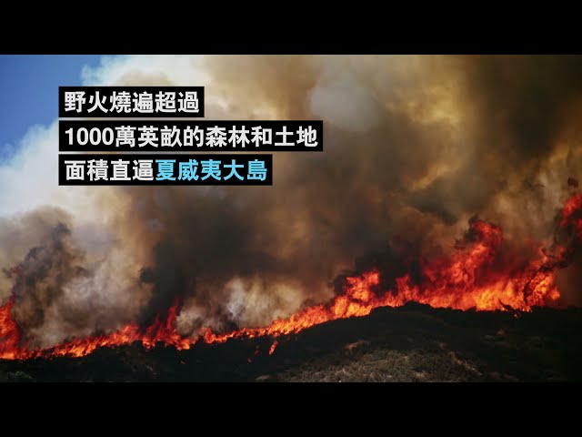 [2021世界地球日]越來越野蠻的森林火災:加州野火背後的大小事