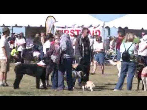 30th Annual Doggie Dash And Dawdle