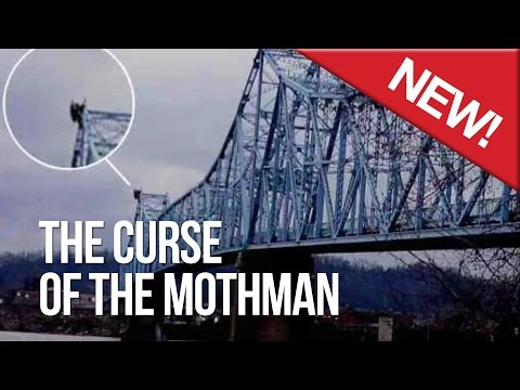 The Curse of the Mothman
